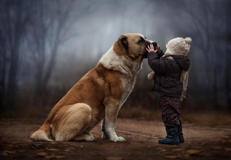 A Come Animali O Forse Meglio Amici Noi Siamo Futuro